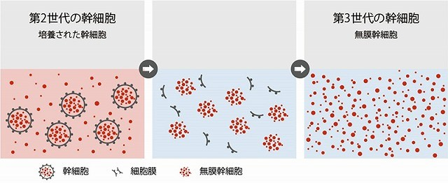 ヒト由来無膜幹細胞培養液